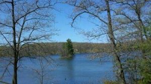 Scenic Nelligan Lake - a great place to enjoy nature while catching panfish!